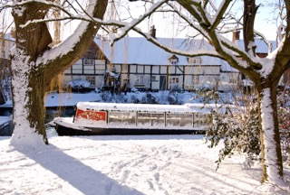 Rose of Hungerford in the snow (web)